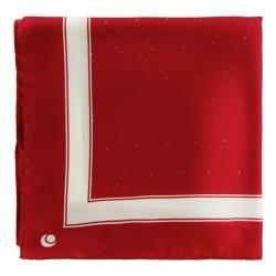 Suit Pocket Handkerchiefs - Griffe 1
